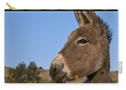 Donkey In Greece Carry-all Pouch