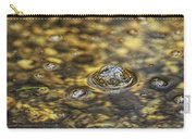 Down By The Bubbling Spring Carry-all Pouch