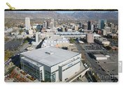 Downtown Salt Lake City Carry-all Pouch
