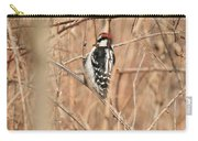 Downy Woodpecker In Brush Carry-all Pouch