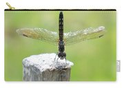 Dragonfly Doing A Handstand Carry-all Pouch