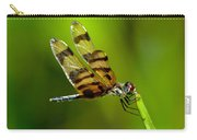 Dragonfly Eating Carry-all Pouch