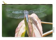 Dragonfly In Early Autumn Carry-all Pouch