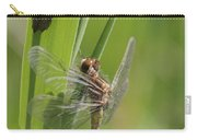 Dragonfly Metamorphosis - Eleventh In Series Carry-all Pouch