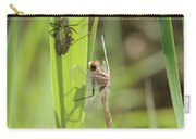 Dragonfly Metamorphosis - Tenth In Series Carry-all Pouch