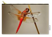 Dragonfly On Dead Reed Carry-all Pouch