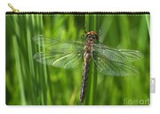 Dragonfly On Grass Carry-all Pouch