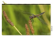 Dragonfly On Seed Pod 2 Carry-all Pouch