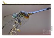 Dragonfly Stance Carry-all Pouch