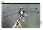 Dragonfly Wing Details II Carry-all Pouch