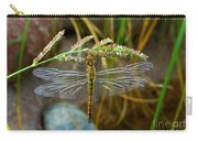 Dragonfly X-ray Carry-all Pouch