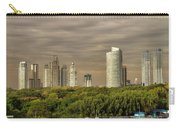 Dramatic Modern Buenos Aires Carry-all Pouch