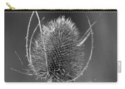 Dried Common Teasel Carry-all Pouch