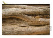 Driftwood 1 Carry-all Pouch by Adam Romanowicz