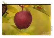 Droplets From A Red Apple   Carry-all Pouch