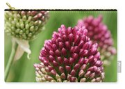 Drumstick Allium Carry-all Pouch