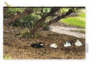 Ducks Resting Fresco Carry-all Pouch