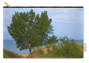 Dune - Indiana Lakeshore Carry-all Pouch