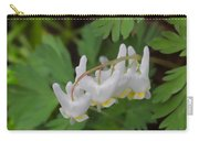 Dutchman's Breeches Carry-all Pouch