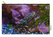 Dwarf Cuttlefish Carry-all Pouch