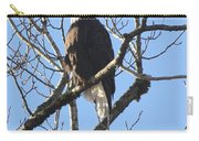 Bald Eagle Sunny Perch Carry-all Pouch