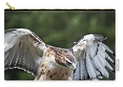 Eagle Wings Carry-all Pouch