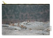 Early Birds On The Edge Carry-all Pouch