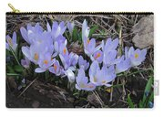 Early Crocuses Carry-all Pouch