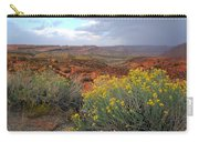 Early Evening Landscape At Arches National Park Carry-all Pouch