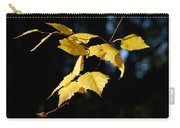 Early Fall Of  Downy Birch Carry-all Pouch