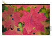 Early Fall Of Norway Maple Carry-all Pouch