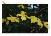 Early Fall Of Wych Elm Carry-all Pouch