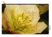 Easter Bloom 2014 Carry-all Pouch