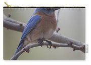 Eastern Blue Bird Carry-all Pouch