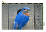 Eastern Bluebird At Nest Carry-all Pouch