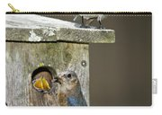 Eastern Bluebird Family Carry-all Pouch