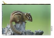 Eastern Chipmunk On Snag North America Carry-all Pouch