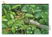 Eastern Pondhawk Female Dragonfly - Erythemis Simplicicollis - On Pine Needles Carry-all Pouch