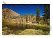 Eastern Sierras 18 Carry-all Pouch