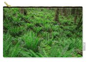 Ecola Ferns Carry-all Pouch