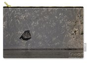 Edge Of The Yellowstone River   #4527 Carry-all Pouch