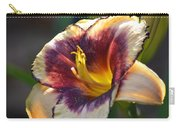 Edged In Crimson - Lily Carry-all Pouch