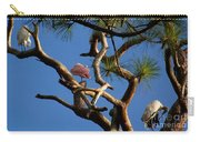 Egret Spoonbill And Stork Carry-all Pouch
