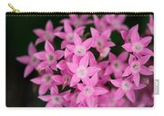 Egyptian Star Flowers Or Penta Carry-all Pouch
