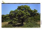 Eisenhower Park Scenic Carry-all Pouch