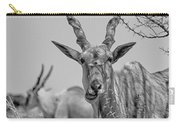 Eland-black And White Carry-all Pouch