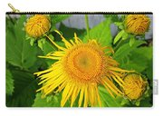 Elecampane Daisies Carry-all Pouch