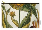 Elecampane Carry-all Pouch by Elizabeth Blackwell