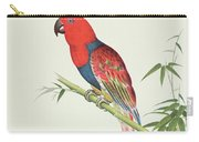 Electus Parrot On A Bamboo Shoot Carry-all Pouch