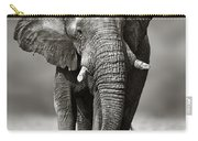 Elephant Approach From The Front Carry-all Pouch